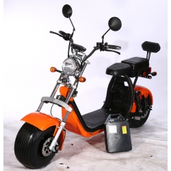 Citycoco X17 1500W 20ah (su viena baterija)